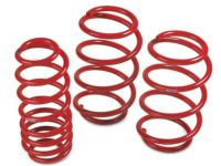 Toyota TRD Lowering Springs - Front and Rear - PT843-1C170